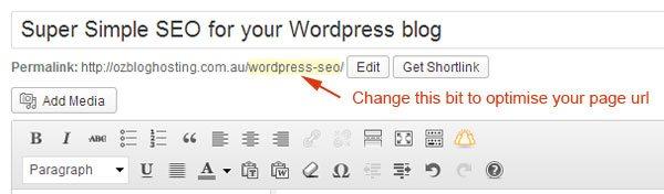 Wordpress-SEO-Page-URL