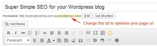 Wordpress-SEO-Page-URL